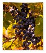 Wine Grapes Fleece Blanket