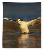 Wings Of Light Fleece Blanket