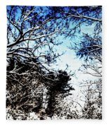 Winter Along The Bronx River Fleece Blanket