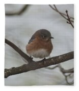 Winter Blue Bird 1 Fleece Blanket