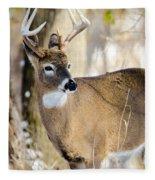 Winter Buck Fleece Blanket by Steven Santamour
