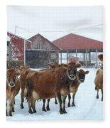 Winter Dairyland Fleece Blanket