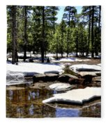 Winter Gives Way To Spring 32626 Fleece Blanket