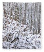 Winter Haven 2 Fleece Blanket