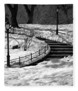 Winter In Central Park Fleece Blanket