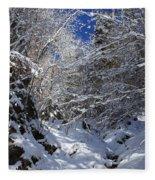 winter in the Bavarian alps 2 Fleece Blanket
