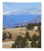 Winter In The Pike National Forest Fleece Blanket