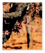 Winter In The Vineyard Fleece Blanket