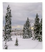 Fabulous Winter. Fleece Blanket
