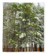 Winter Landscapes Fleece Blanket