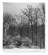 Winter Light Post Fleece Blanket