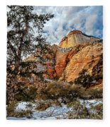 Winter Morning In Zion Fleece Blanket