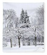 Winter Park Landscape Fleece Blanket