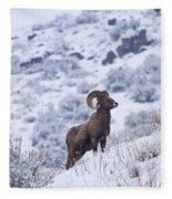 Winter Ram Fleece Blanket