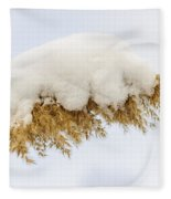 Winter Reed Under Snow Fleece Blanket