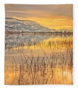 Winter Solstice 5 Fleece Blanket