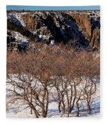 Winter Sprouts Fleece Blanket