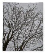Winter Tree 6 Fleece Blanket