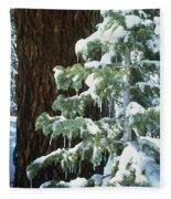 Winter Tree Sierra Nevada Mts Ca Usa Fleece Blanket