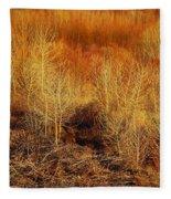 Winter Trees Color 3 Fleece Blanket