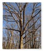 Winter White Oak Fleece Blanket