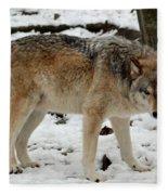 Winter Wolf In The Snow Fleece Blanket