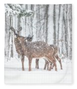 Winters Love Fleece Blanket