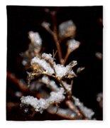 Winter's Night Fleece Blanket