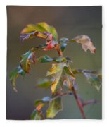 Winter's Oak Sapling Fleece Blanket