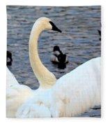 Winter's White Swan Fleece Blanket