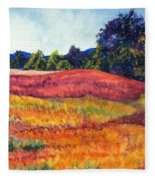 Wisconsin Summer Fleece Blanket