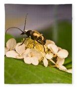 Wise Beetle Fleece Blanket