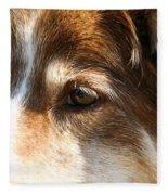 Wise Old Collie Eyes Fleece Blanket