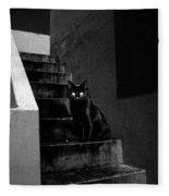 Witch's Cat In Moonlight... Fleece Blanket