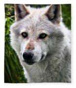 Wolf Alpha Male Fleece Blanket