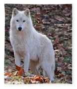 Wolf In Autumn Fleece Blanket