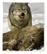 Wolf Protecting Kill Fleece Blanket