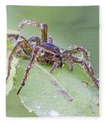 Wolf Spider In Dew  Fleece Blanket