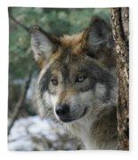 Wolf Upclose Fleece Blanket