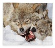 Wolves Rules Fleece Blanket