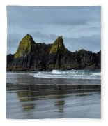Wonders Of The Ocean Fleece Blanket