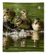 Wood Duck Babies Fleece Blanket