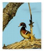 Wood Duck Drake In Tree Fleece Blanket