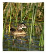 Wood Duck Drake Fleece Blanket