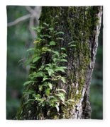 Wood Flora 2013 Fleece Blanket