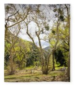 Woodland Glen In The California Vallecito Mountains Fleece Blanket
