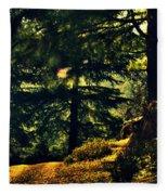 Woods Fleece Blanket