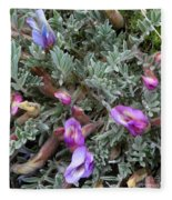 Woolly-pod Locoweed Closeup Fleece Blanket