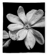 Wounded White Magnolia Wide Version Black And White Fleece Blanket