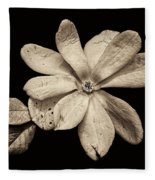 Wounded White Magnolia Wide Version Sepia Fleece Blanket
